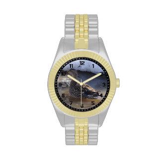 Reloj femenino del pato silvestre