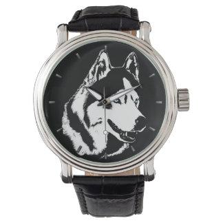 Reloj fornido del Malamute del husky siberiano del