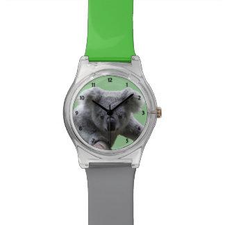Reloj gris del verde May28th del oso de koala