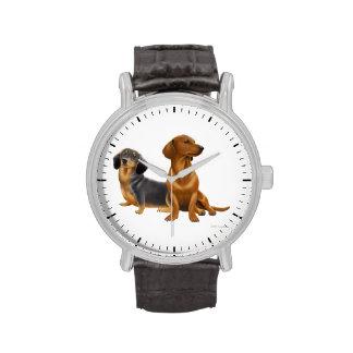 Reloj joven de los perros del Dachshund