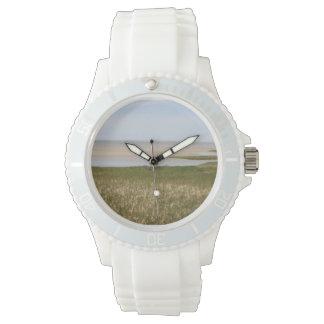 Reloj largo del santuario de fauna del pasto