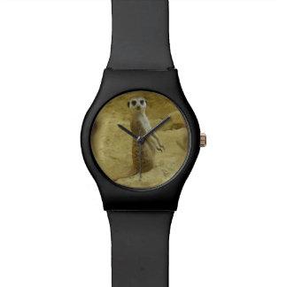 reloj lindo de Meerkat