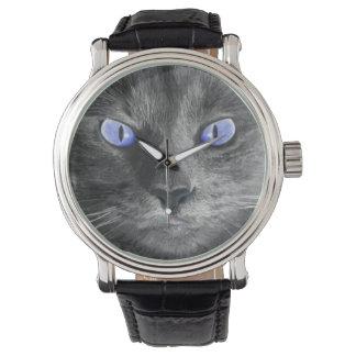 Reloj místico del gato