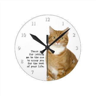 Reloj molesto del gato