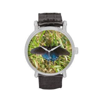 reloj negro y azul de la mariposa