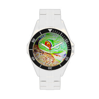 Reloj observado rojo de la rana arbórea