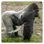 Reloj poderoso del gorila