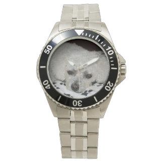 Reloj resistente blanco de agua del perro