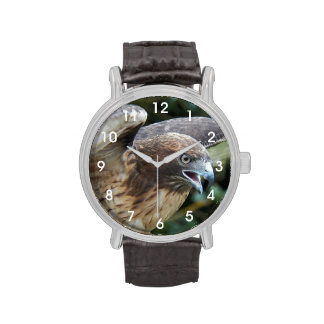 Reloj Rojo-Atado del halcón