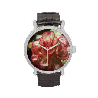 Reloj rojo y blanco del clavel