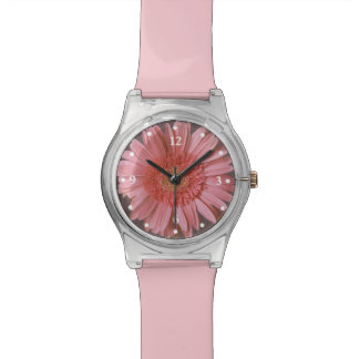 Reloj rosado de la margarita de Gerber