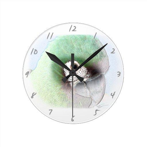 Reloj severo del arte del Macaw