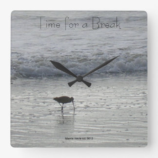 Reloj solitario de la lavandera de la playa