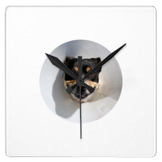 Reloj sonriente divertido del perro