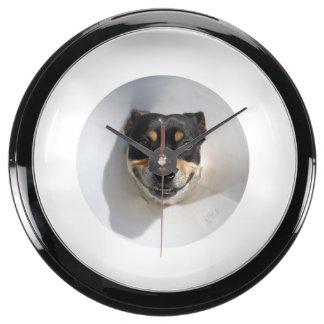 Reloj sonriente divertido del perro relojes aquavista