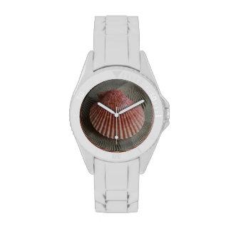 Reloj temático del Seashell de la playa