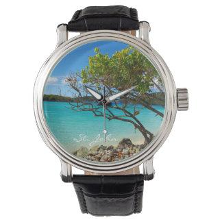 Reloj tropical de la bahía del canela de St. John