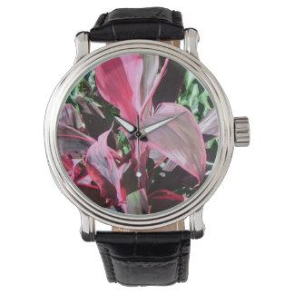 Reloj *Tropical del Tai Plant*
