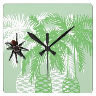 reloj verde de la araña de la palmera y del tarant