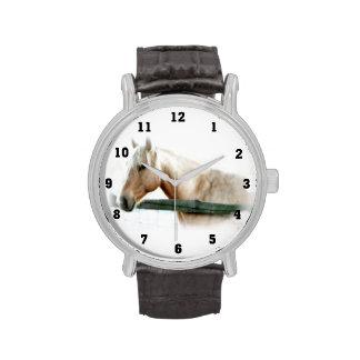 Relojes de la foto del caballo