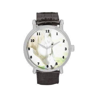 Relojes de la fotografía del caballo