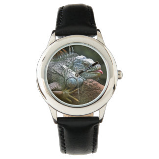 Relojes de la iguana