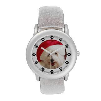 Relojes del mascota del perro