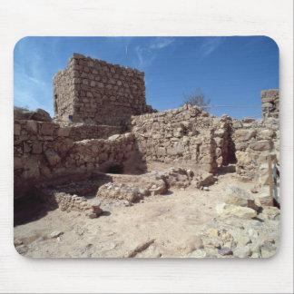 Remains of the fortress palace mouse pad