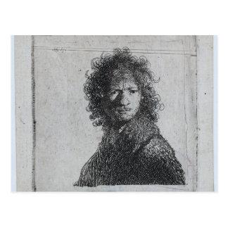 Rembrandt: Self-portrait, Frowning Postcard