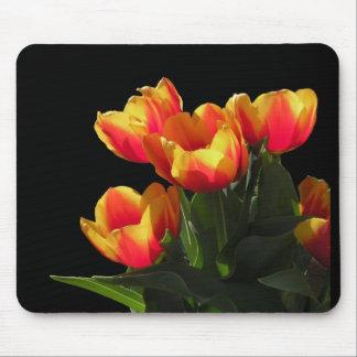 Rembrandt Tulip Mousepad