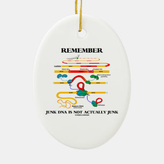 Remember Junk DNA Is Not Actually Junk Double-Sided Oval Ceramic Christmas Ornament