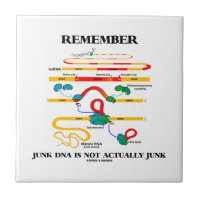 Remember Junk DNA Is Not Actually Junk Small Square Tile