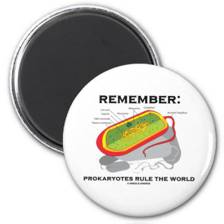 Remember: Prokaryotes Rule The World 2 Inch Round Magnet