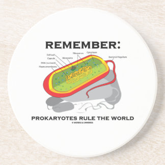 Remember: Prokaryotes Rule The World (Bacterium) Drink Coaster