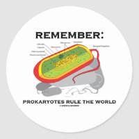 Remember: Prokaryotes Rule The World Classic Round Sticker