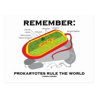 Remember: Prokaryotes Rule The World Post Card