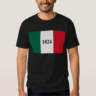 Remember the Alamo Texas State Flag Shirt