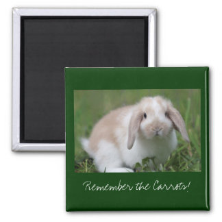 Remember the Carrots! Bunny Magnet