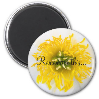 Remember this... 2 inch round magnet