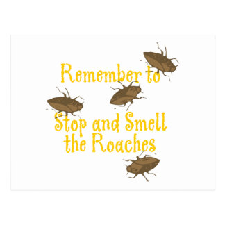 Remember to stop and smell the roaches post card