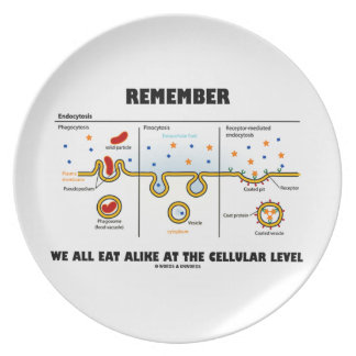 Remember We All Eat Alike At The Cellular Level Party Plates