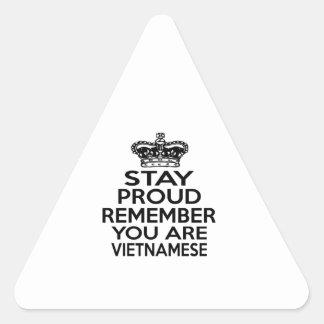 REMEMBER YOU ARE VIETNAMESE TRIANGLE STICKER