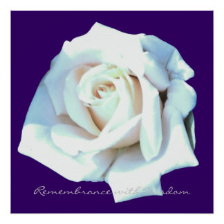 Remembrance with Wisdom White Rose Art Print