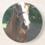 Remiende la colección del caballo posavasos manualidades