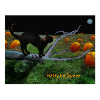 Remiendo de la calabaza, feliz Halloween Tarjeta Postal