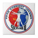 Remiendo de la misión de Skylab 2 Teja Cerámica