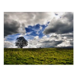 Remiendo del cielo azul HDR Postal