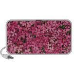 Remiendo rosado de la flor notebook altavoz