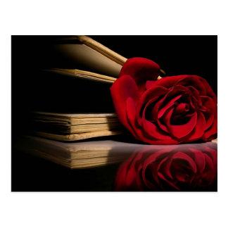 Reminder Rose Postcard