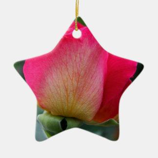 Reminisce Ceramic Ornament